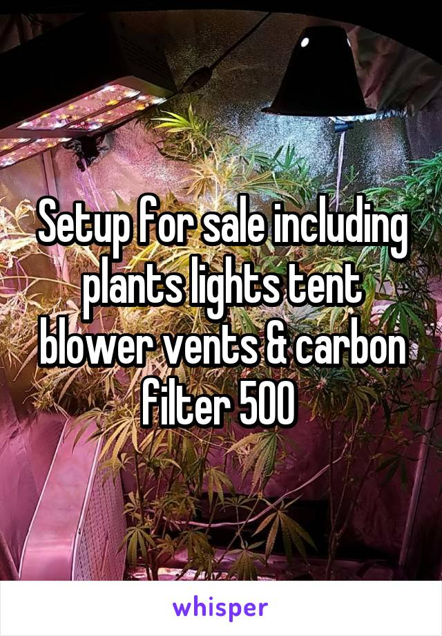 Setup for sale including plants lights tent blower vents & carbon filter 500