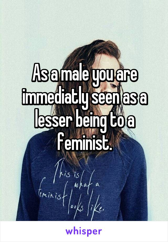 As a male you are immediatly seen as a lesser being to a feminist.