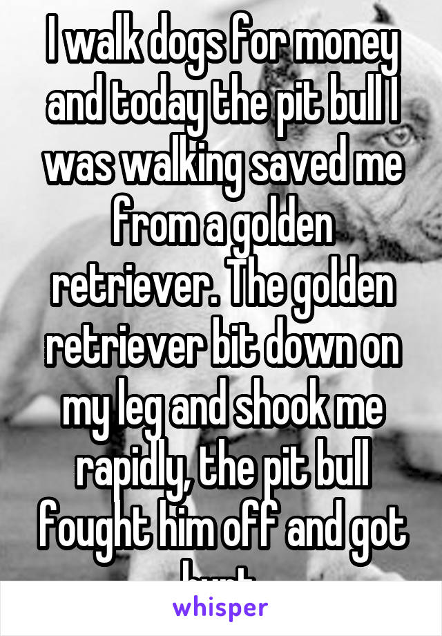I walk dogs for money and today the pit bull I was walking saved me from a golden retriever. The golden retriever bit down on my leg and shook me rapidly, the pit bull fought him off and got hurt.