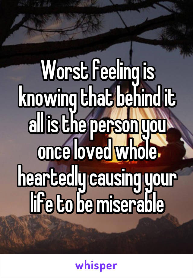Worst feeling is knowing that behind it all is the person you once loved whole heartedly causing your life to be miserable