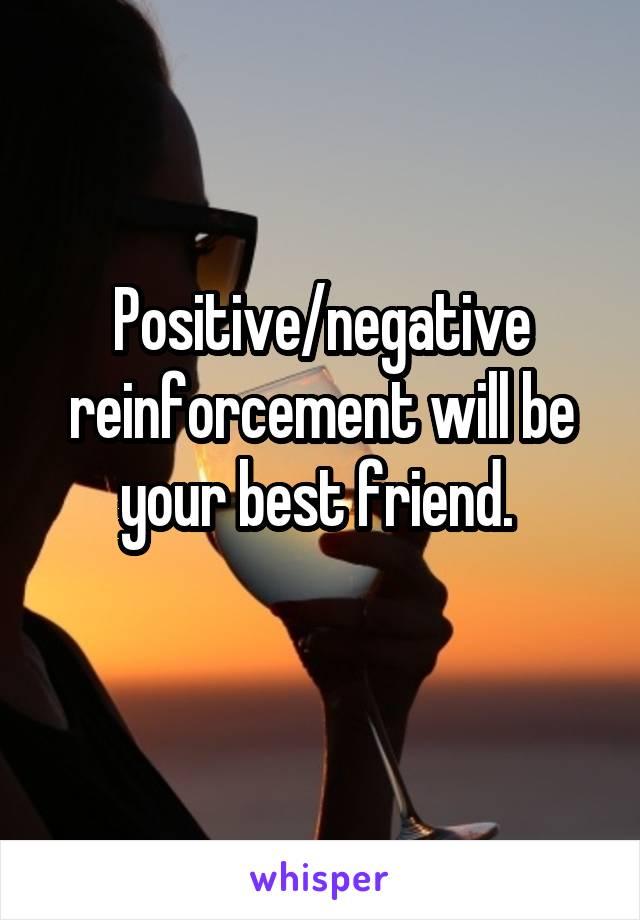 Positive/negative reinforcement will be your best friend.