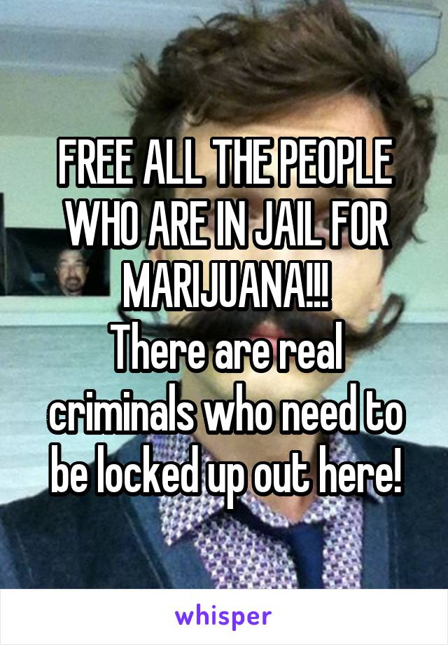 FREE ALL THE PEOPLE WHO ARE IN JAIL FOR MARIJUANA!!! There are real criminals who need to be locked up out here!