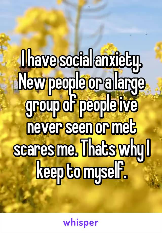 I have social anxiety. New people or a large group of people ive never seen or met scares me. Thats why I keep to myself.