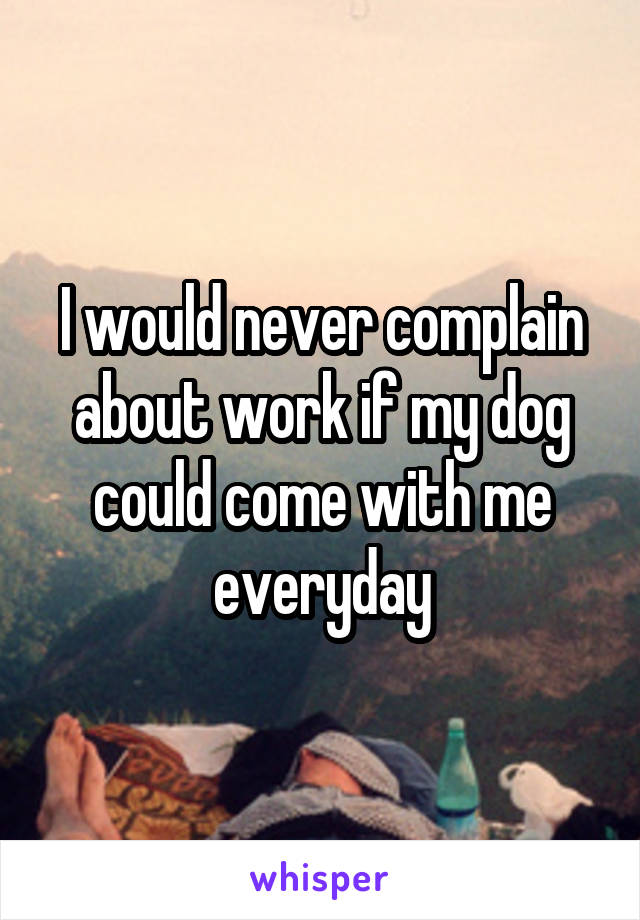 I would never complain about work if my dog could come with me everyday