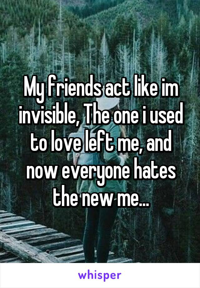 My friends act like im invisible, The one i used to love left me, and now everyone hates the new me...