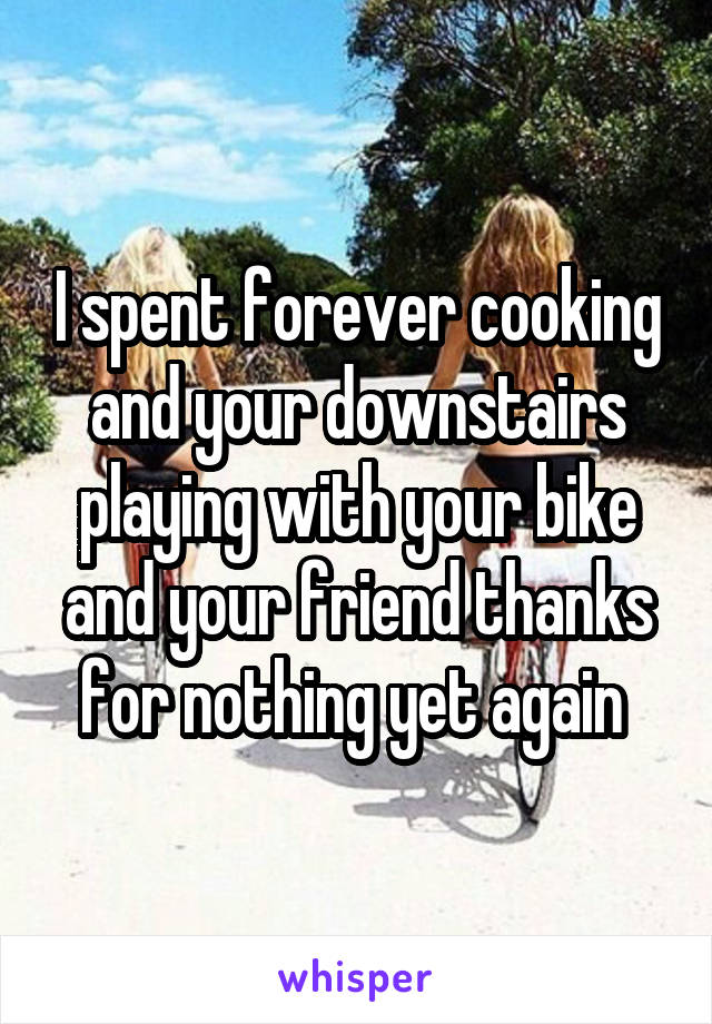 I spent forever cooking and your downstairs playing with your bike and your friend thanks for nothing yet again