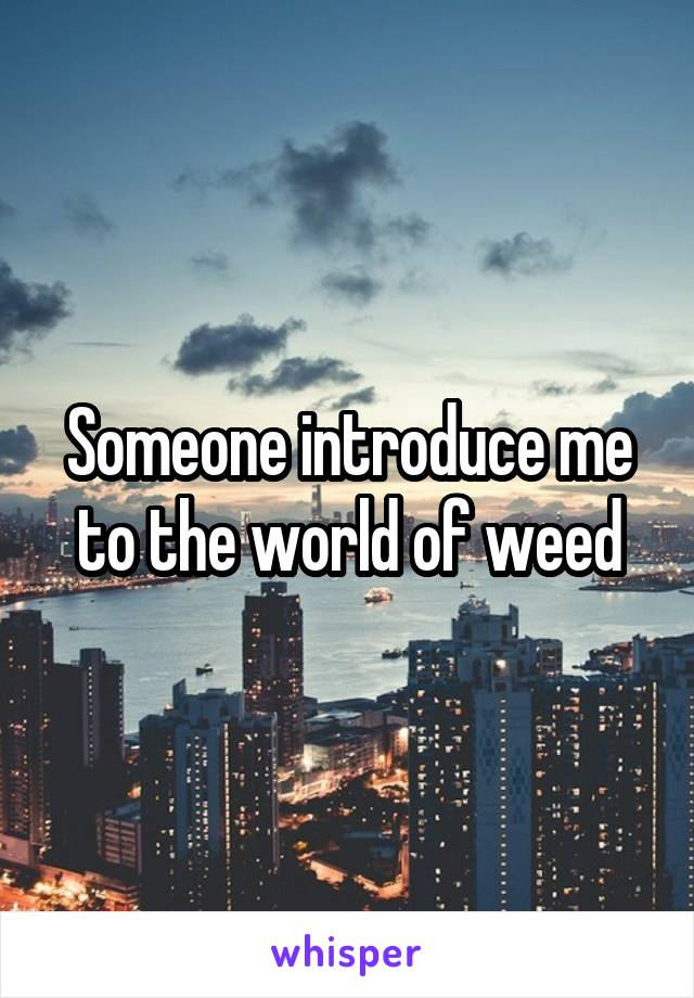 Someone introduce me to the world of weed
