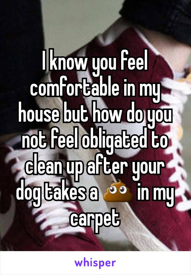 I know you feel comfortable in my house but how do you not feel obligated to clean up after your dog takes a 💩 in my carpet