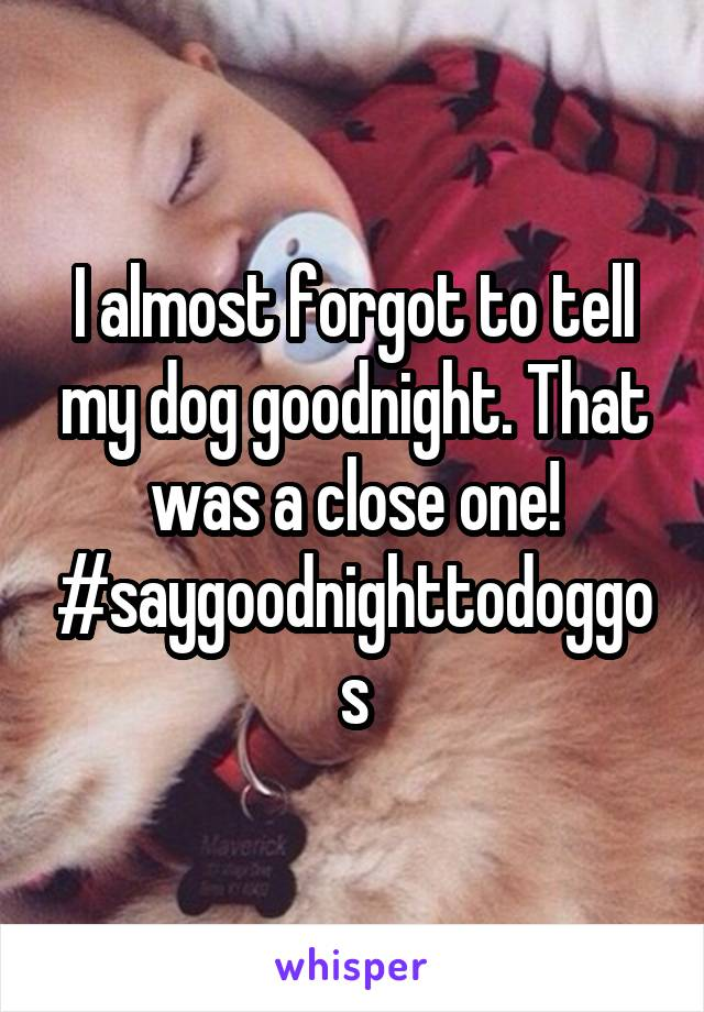 I almost forgot to tell my dog goodnight. That was a close one! #saygoodnighttodoggos