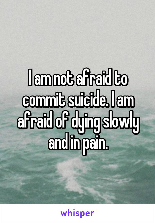 I am not afraid to commit suicide. I am afraid of dying slowly and in pain.