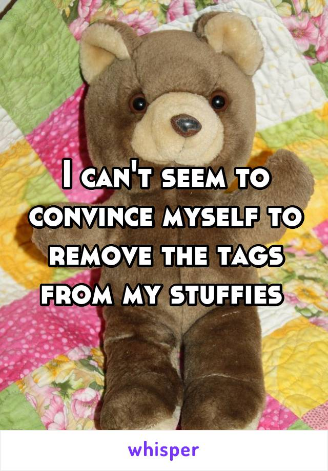 I can't seem to convince myself to remove the tags from my stuffies