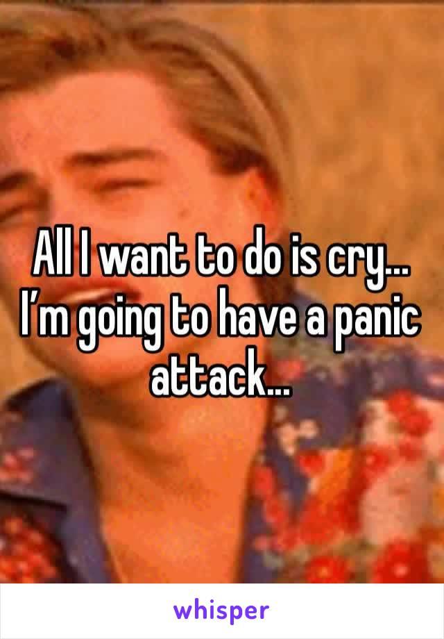 All I want to do is cry... I'm going to have a panic attack...