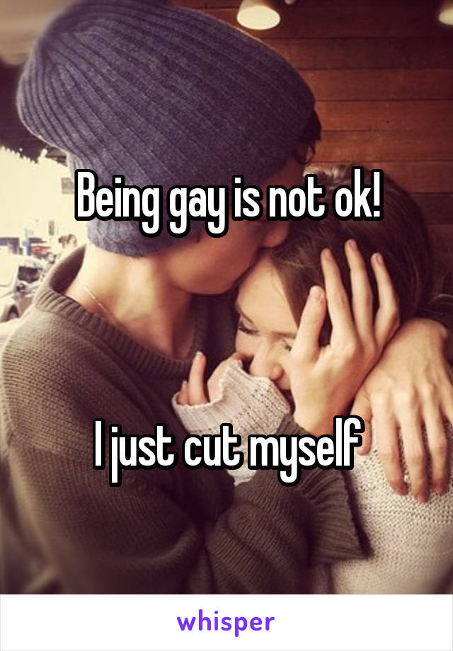 Being gay is not ok!    I just cut myself