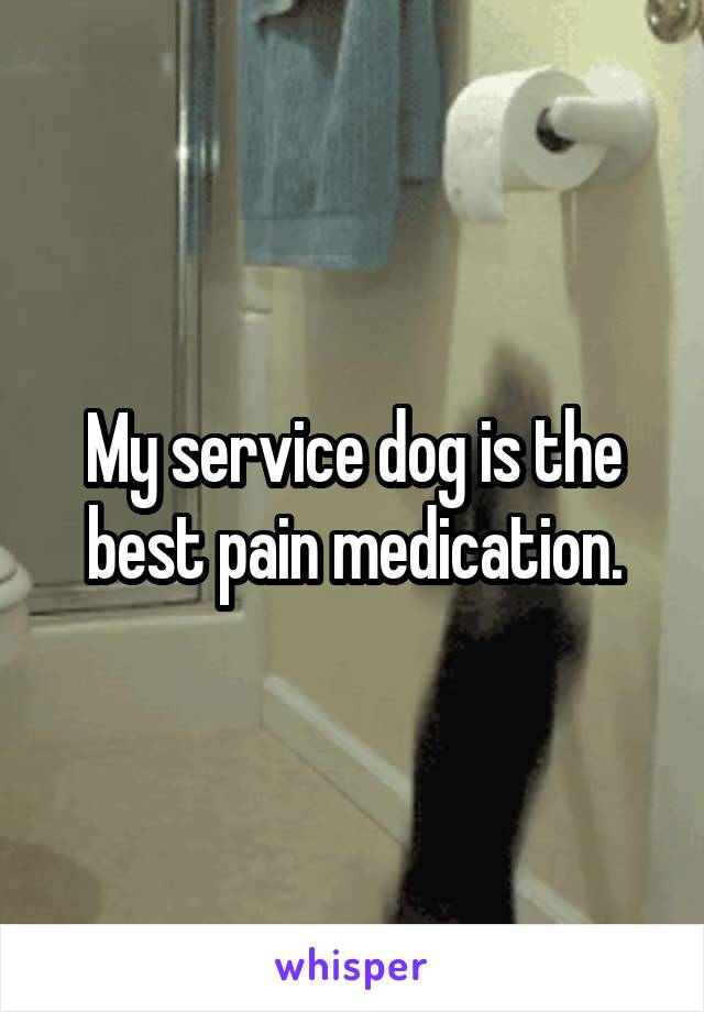My service dog is the best pain medication.