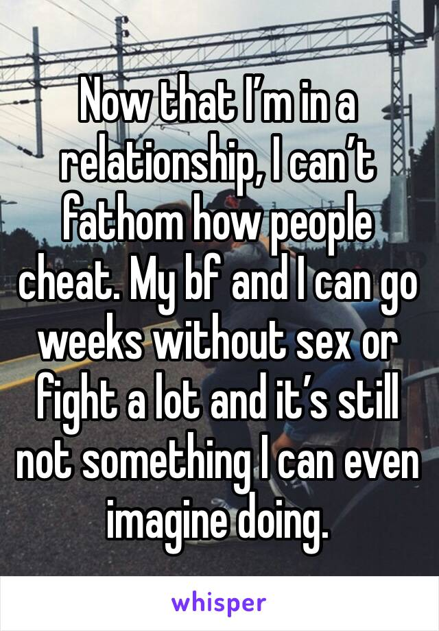 Now that I'm in a relationship, I can't fathom how people cheat. My bf and I can go weeks without sex or fight a lot and it's still not something I can even imagine doing.