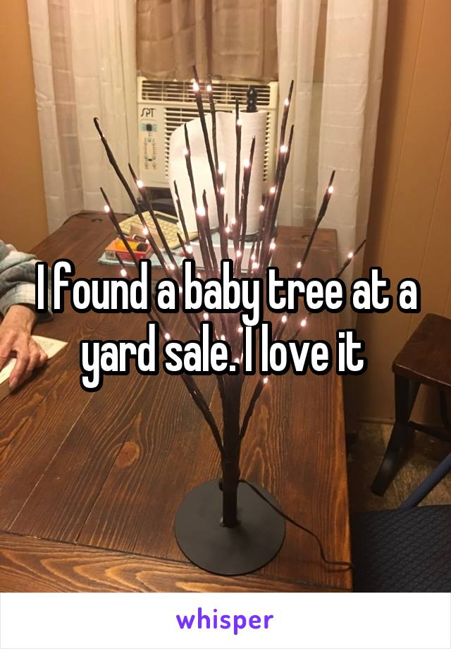 I found a baby tree at a yard sale. I love it