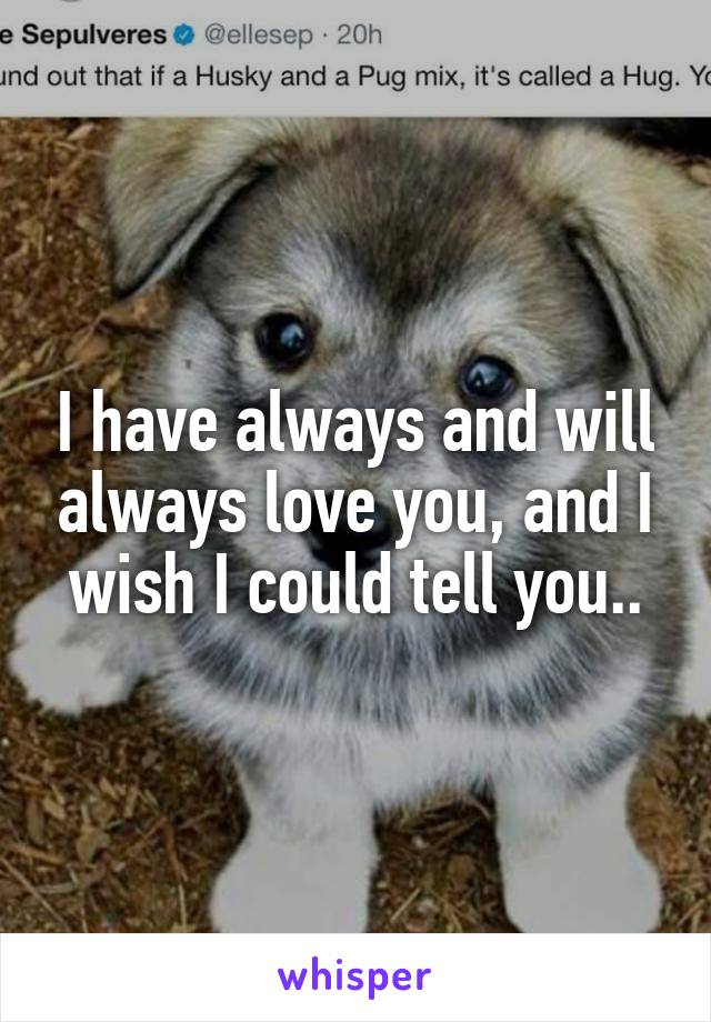 I have always and will always love you, and I wish I could tell you..