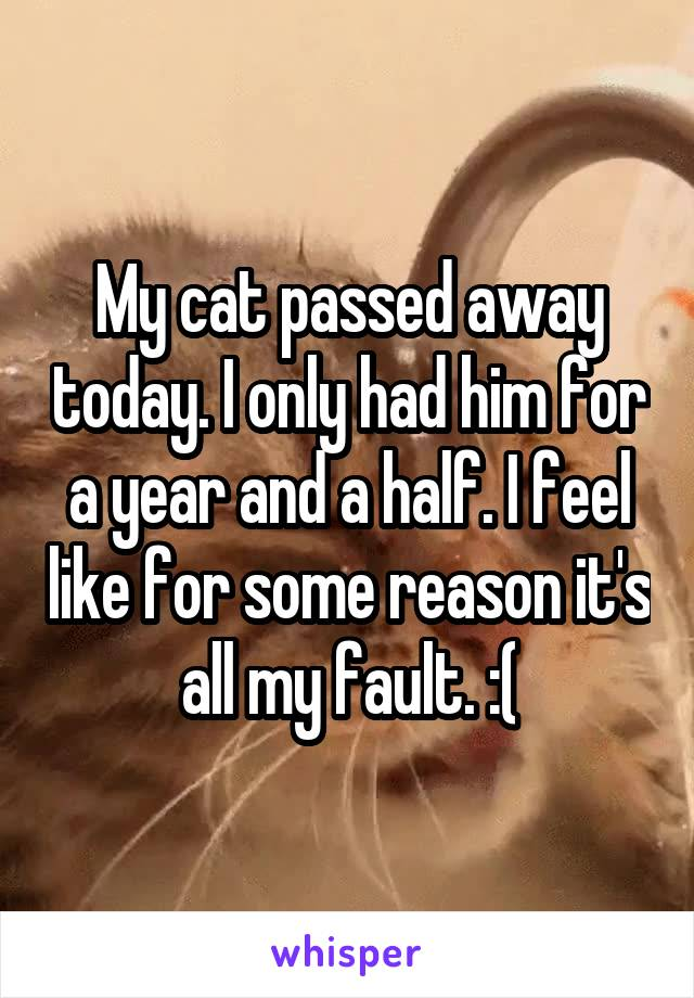 My cat passed away today. I only had him for a year and a half. I feel like for some reason it's all my fault. :(