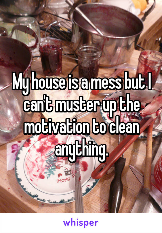 My house is a mess but I can't muster up the motivation to clean anything.