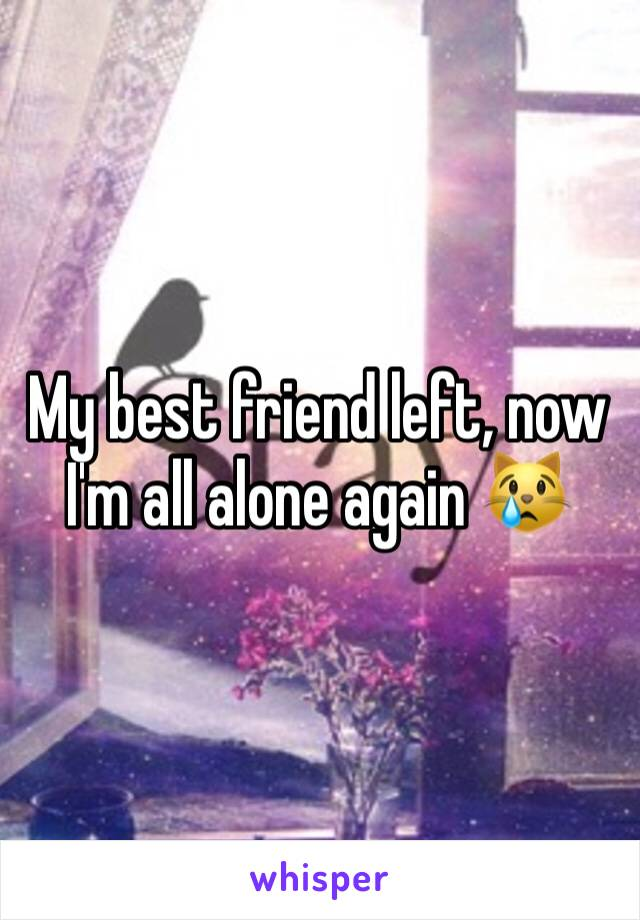 My best friend left, now I'm all alone again 😿