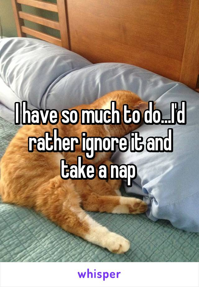 I have so much to do...I'd rather ignore it and take a nap