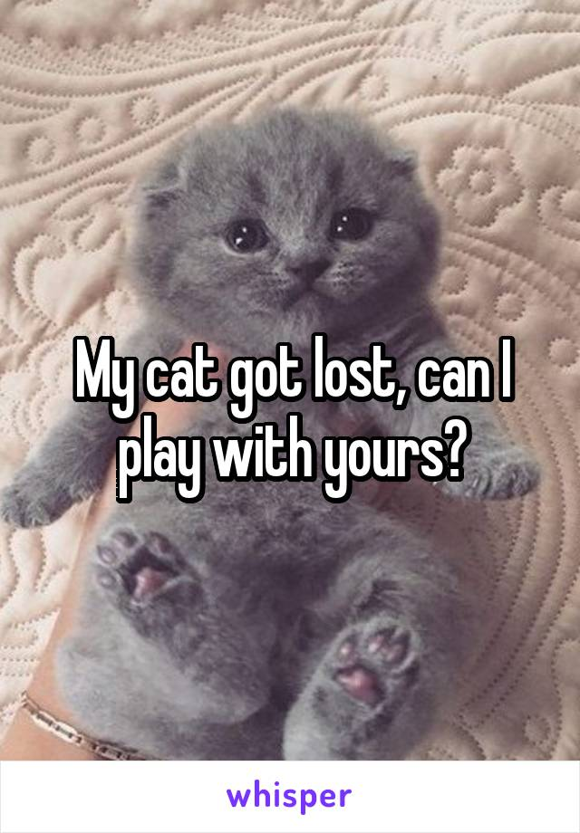 My cat got lost, can I play with yours?