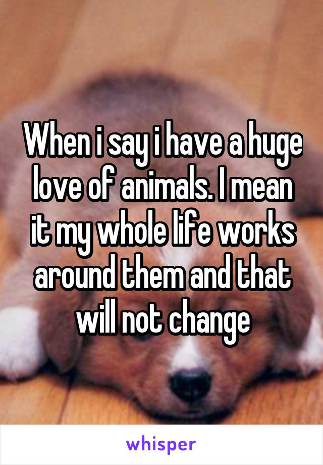 When i say i have a huge love of animals. I mean it my whole life works around them and that will not change