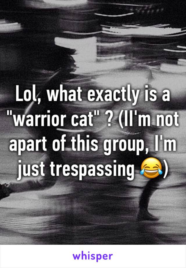 """Lol, what exactly is a """"warrior cat"""" ? (II'm not apart of this group, I'm just trespassing 😂)"""