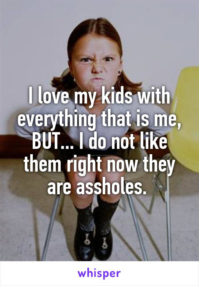 I love my kids with everything that is me, BUT... I do not like them right now they are assholes.