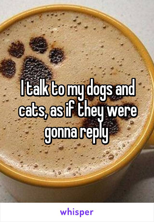 I talk to my dogs and cats, as if they were gonna reply