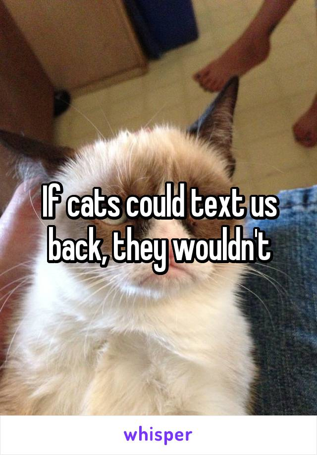 If cats could text us back, they wouldn't