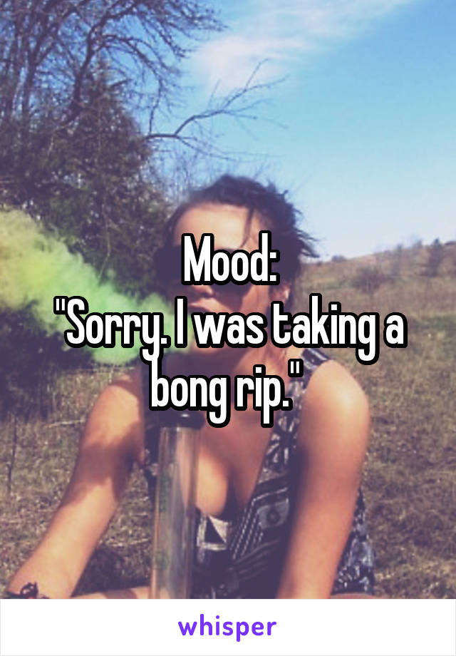 "Mood: ""Sorry. I was taking a bong rip."""