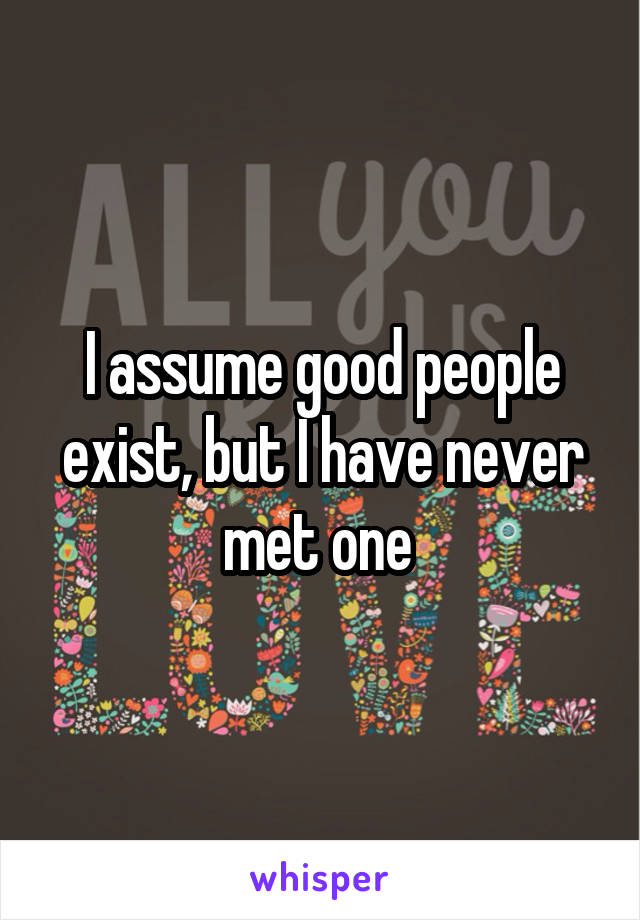 I assume good people exist, but I have never met one