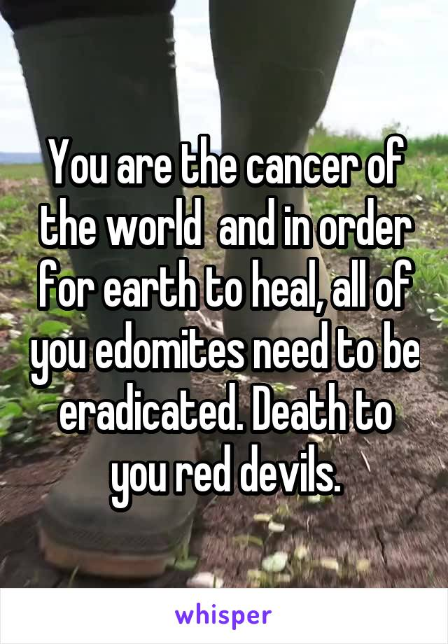 You are the cancer of the world  and in order for earth to heal, all of you edomites need to be eradicated. Death to you red devils.