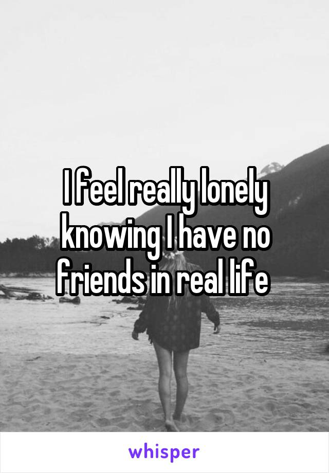 I feel really lonely knowing I have no friends in real life