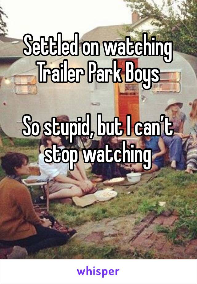 Settled on watching Trailer Park Boys   So stupid, but I can't stop watching