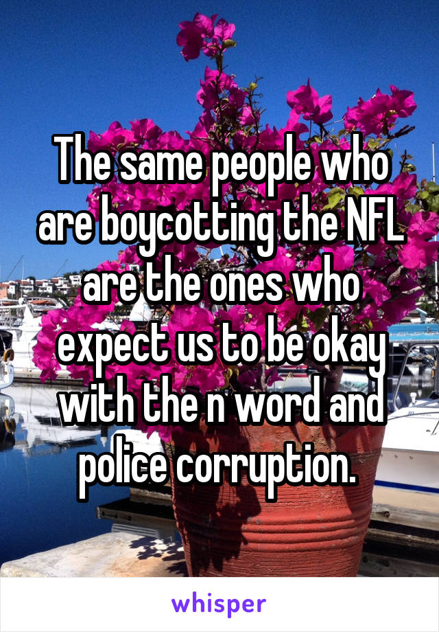 The same people who are boycotting the NFL are the ones who expect us to be okay with the n word and police corruption.