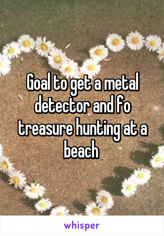 Goal to get a metal detector and fo treasure hunting at a beach