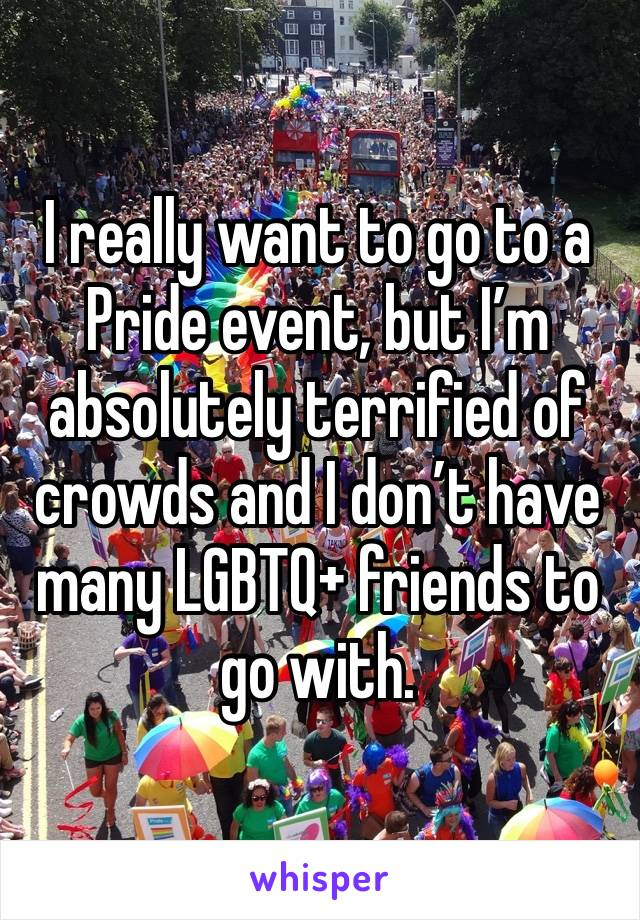 I really want to go to a Pride event, but I'm absolutely terrified of crowds and I don't have many LGBTQ+ friends to go with.