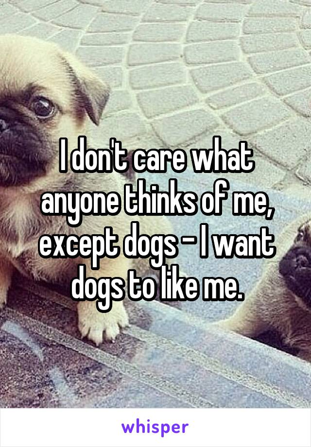 I don't care what anyone thinks of me, except dogs - I want dogs to like me.
