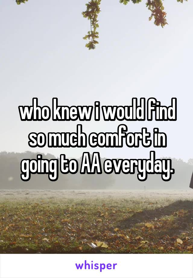 who knew i would find so much comfort in going to AA everyday.