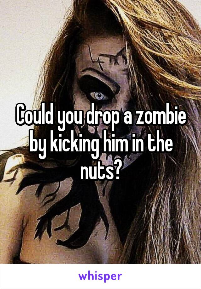 Could you drop a zombie by kicking him in the nuts?