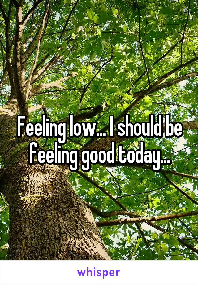 Feeling low... I should be feeling good today...