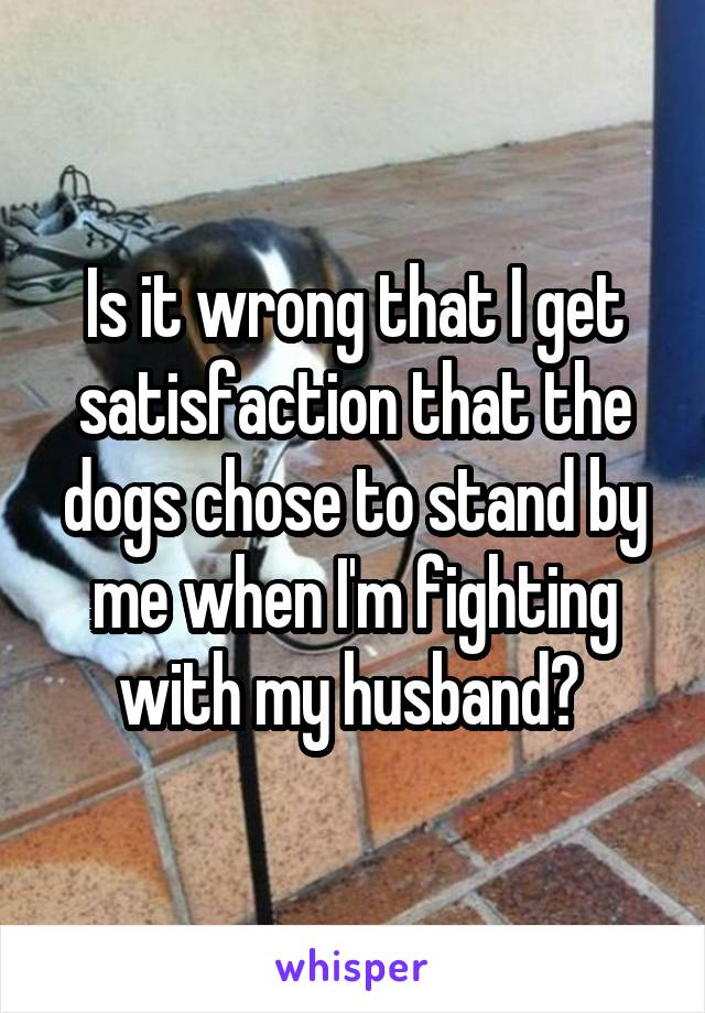 Is it wrong that I get satisfaction that the dogs chose to stand by me when I'm fighting with my husband?