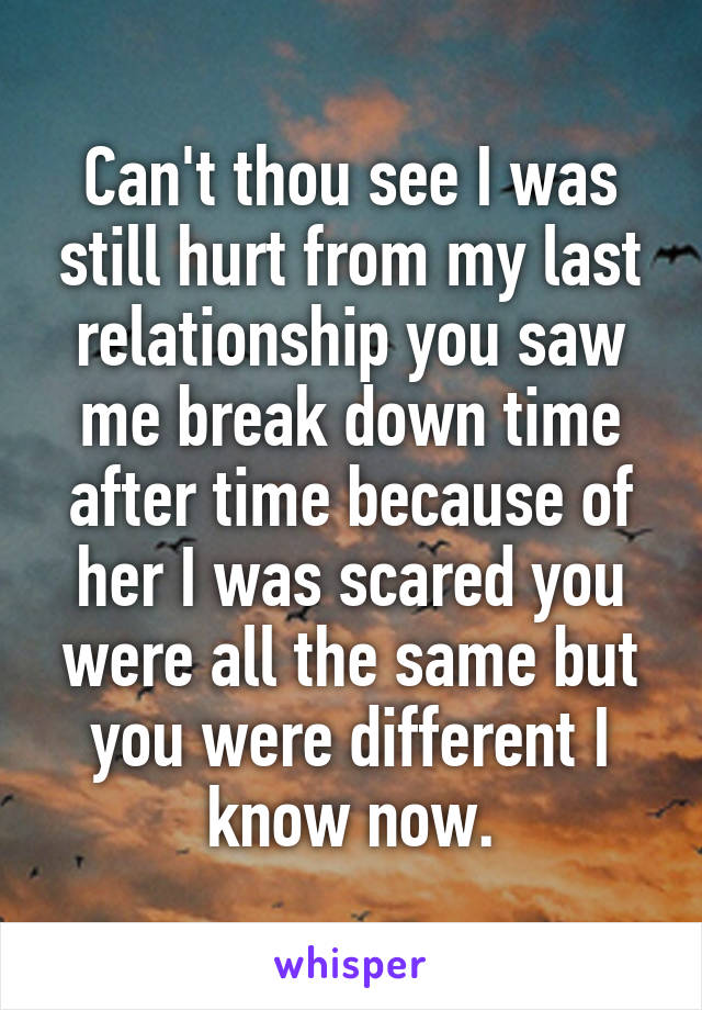Can't thou see I was still hurt from my last relationship you saw me break down time after time because of her I was scared you were all the same but you were different I know now.