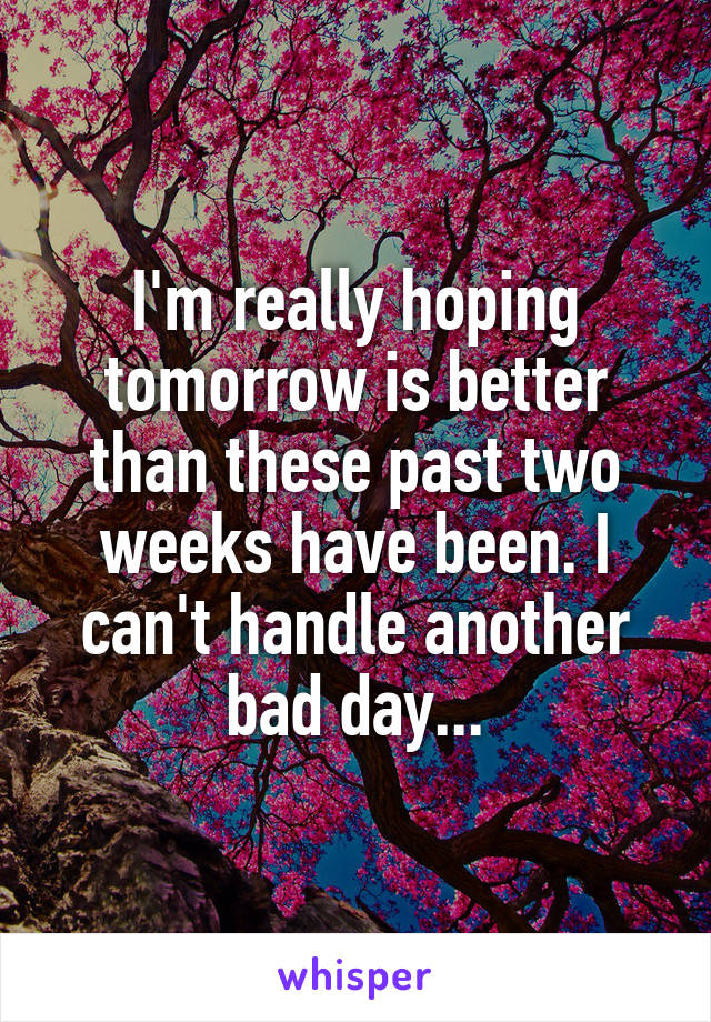 I'm really hoping tomorrow is better than these past two weeks have been. I can't handle another bad day...