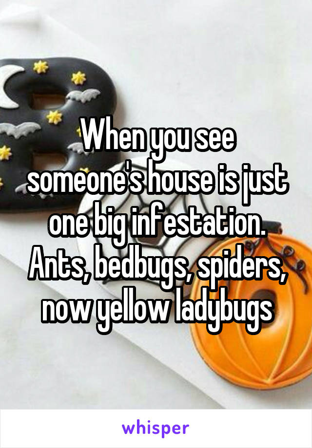 When you see someone's house is just one big infestation. Ants, bedbugs, spiders, now yellow ladybugs