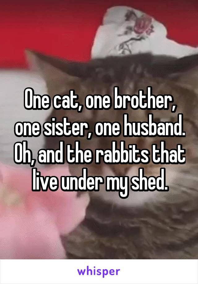 One cat, one brother, one sister, one husband. Oh, and the rabbits that live under my shed.
