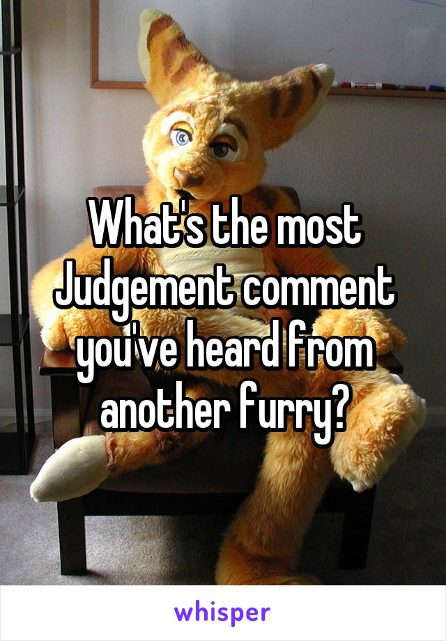 What's the most Judgement comment you've heard from another furry?