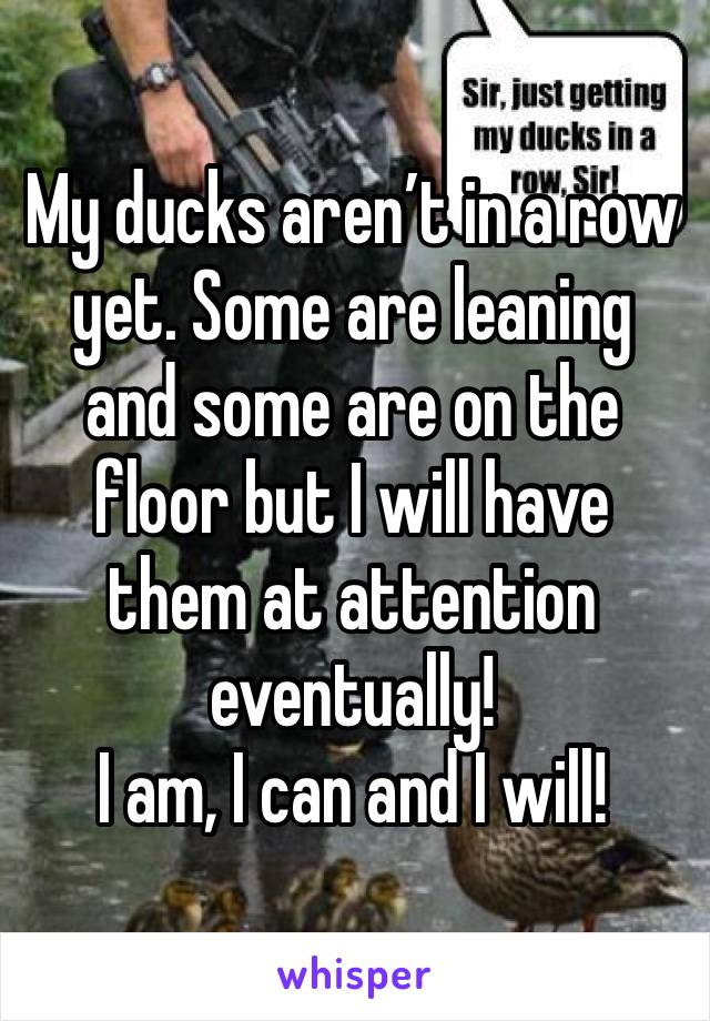 My ducks aren't in a row yet. Some are leaning and some are on the floor but I will have them at attention eventually! I am, I can and I will!